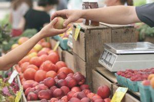 sprzedaż jabłek